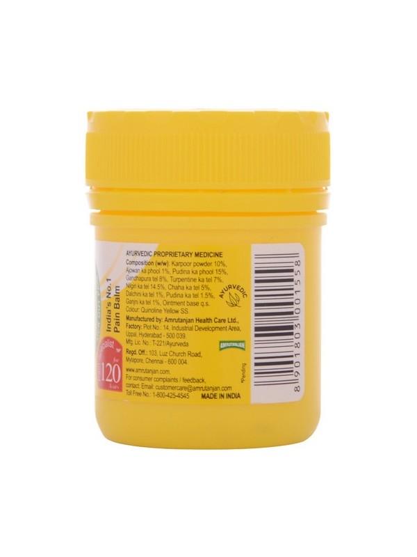 Amrutanjan Balm30 ml